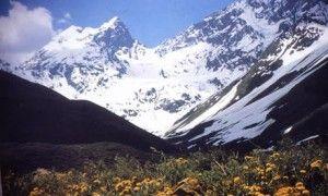 Gobierno anunció cambios legales para permitir protección de glaciares