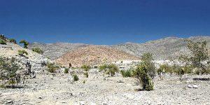 Informe revela que el cambio climático y la sobreexplotación están dejando sin agua al norte de Chile