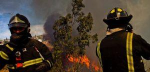 Gerente de eléctrica será formalizado por delito de incendio forestal ante falta de mantención