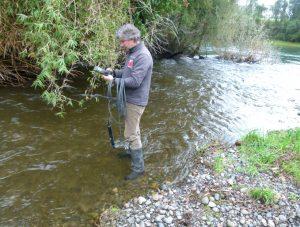 Contaminación en ríos de Osorno: de las 20 denuncias ingresadas en 5 años sólo una ha sido acogida