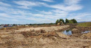 Acogen recurso de protección contra de minera por intervención a ríos Valdivia y Cruces