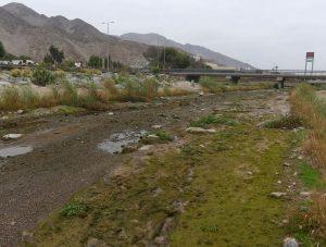 Coordinadora de los sectores bajos anuncia espacios para firmar petición por que el Río Copiapó fluya libre