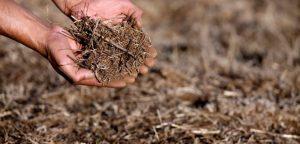 Sequía en Petorca: INDH presenta conclusiones de análisis y critica que problema sigue sin solución