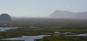 El cuidado de las aguas lluvias para mejorar la protección de los humedales