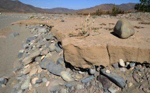 Sequía golpea duro: piden declarar zona de emergencia en la Región de Coquimbo