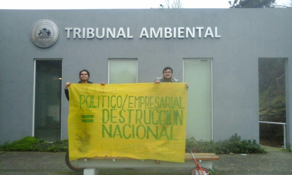 Interponen denuncia contra Ñuble Spa por tala de bosque nativo