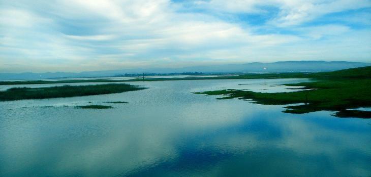 Buscan poner freno a creciente intervención de proyectos hidroeléctricos en alto Bío Bío