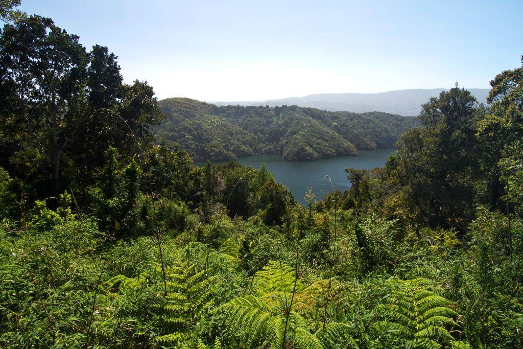 El proyecto hidroeléctrico de Los lagos no se paraliza.