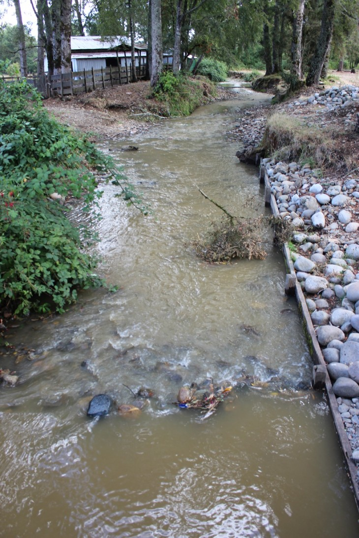 Gobierno amenaza con recurrir al Tribunal Constitucional por nuevos artículos de reforma al Código de Aguas