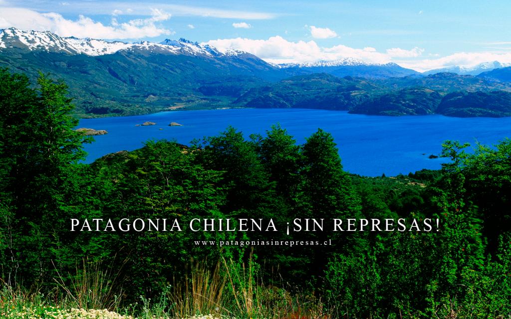 Declaración Pública de Consejo de Defensa de la Patagonia por platas de Chile Ambiente