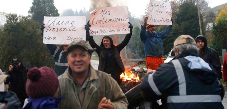 CODEFF exige aclarar vertido de salmones putrefactos en costas de Chiloé