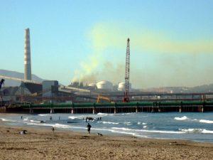¡Desde Quintero hasta Cachagua! Estudio reveló contaminación en agua de mar, sedimento y efectos negativos en las algas