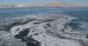 Estudio investigará contaminación en la bahía de Antofagasta