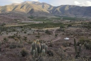 Plan hídrico para Petorca fue desarrollado por los empresarios de las paltas