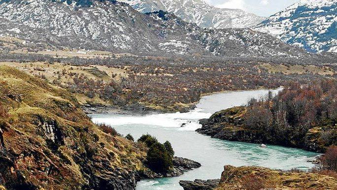 """Pangasius en la Patagonia: el """"pez rata"""" en el menú de los jardines infantiles"""