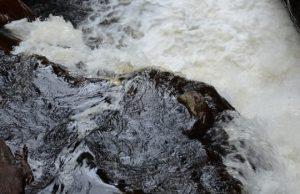 Patentes por derechos de agua no utilizados suman $72.154 millones para 2019