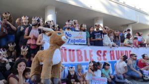 """""""Ñuble se hunde"""": Vecinos y movimientos sociales se unen en rechazo a proyecto Embalse La Punilla"""