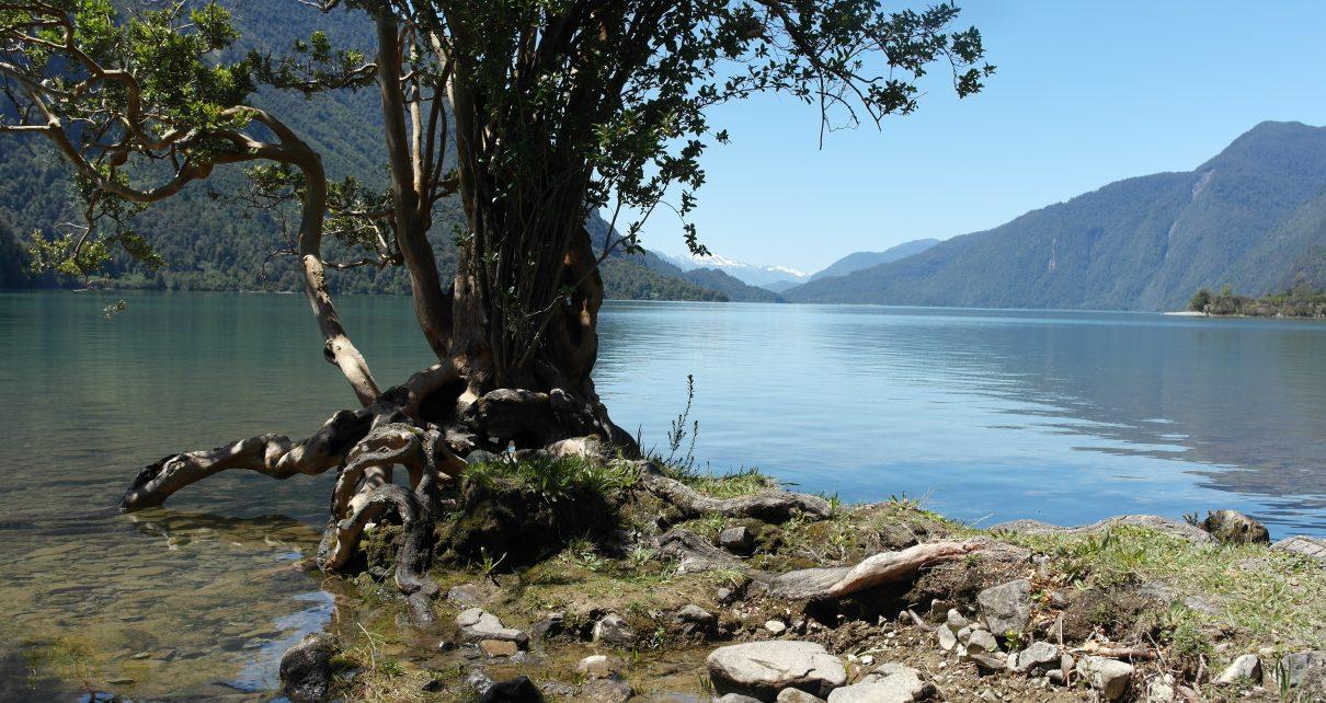 Estudio Mide Impacto Del Cambio Climático En El Sur De Chile: Río Puelo Podría Disminuir Hasta 20% Su Caudal