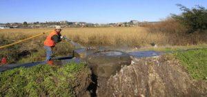Municipio de Concepción acusa contaminación en humedal